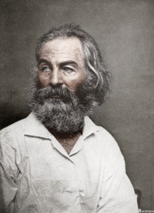 Walt Whitman, American poet, c1880s. (Colorised black and white print).